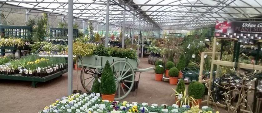 Jackson's Online Garden Centre