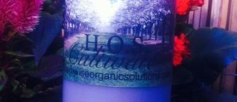 H.O.S. - 'Cultivate' (Unique organic plant nutrient/tonic)