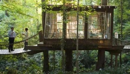 The Tree House - Every Childs Dream