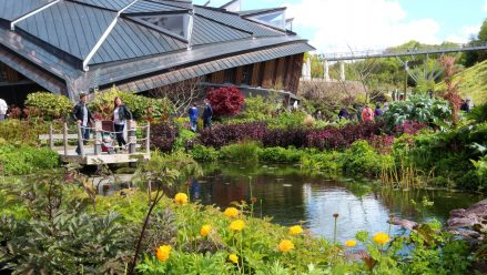 Cold snap makes colours pop at the Eden Project